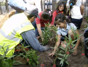 Earth Day Butterfly Garden Project - kids planting